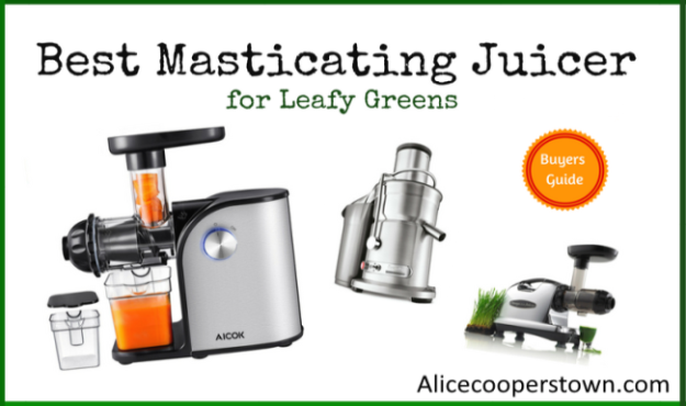 Best Masticating Juicer for Leafy Greens In 2021 - With Buying Guide